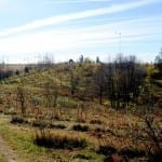 4 Proven Strategies For Gaining Land Access